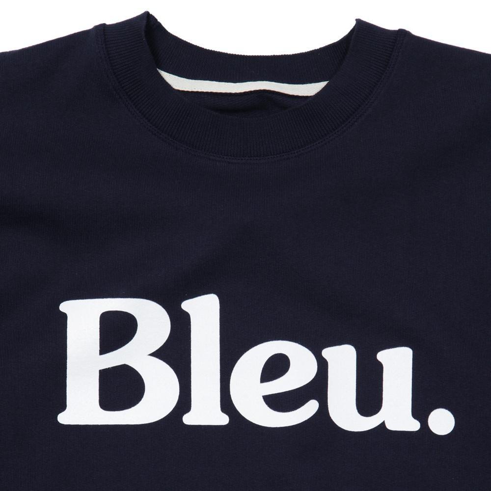 bleu2